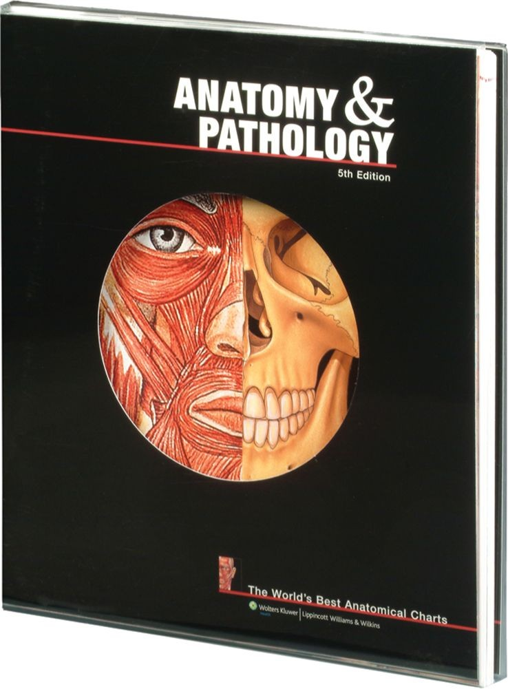 Anatomy Pathology 5th Edition Text Book Medwest Medical Supplies