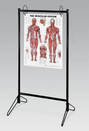 portable chart stand holds up to 25 charts charts flip. Black Bedroom Furniture Sets. Home Design Ideas